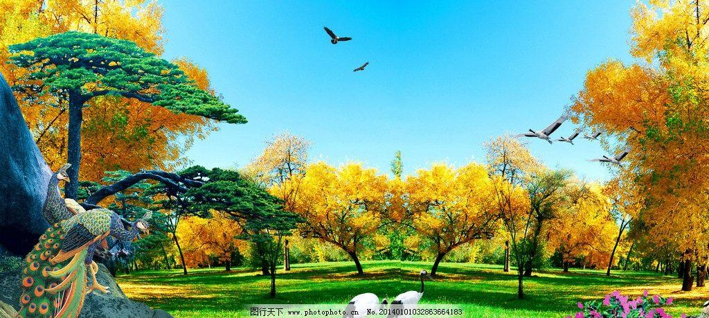 风景 自然风景 风景图 山水图 石头 松树 孔雀 仙鹤 树木 枫林 psd