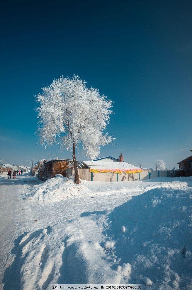 吉林雾凇岛 吉林 雾松岛 白雪 民房 道路 树木 树挂 蓝天 国内旅游 旅