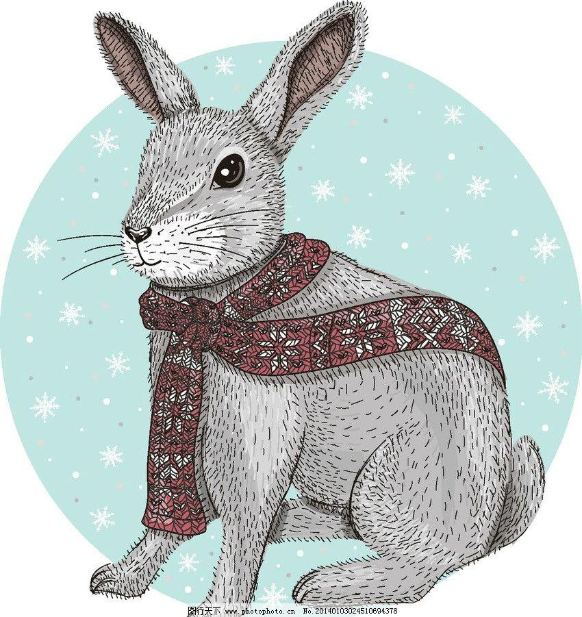 世界最可爱小兔