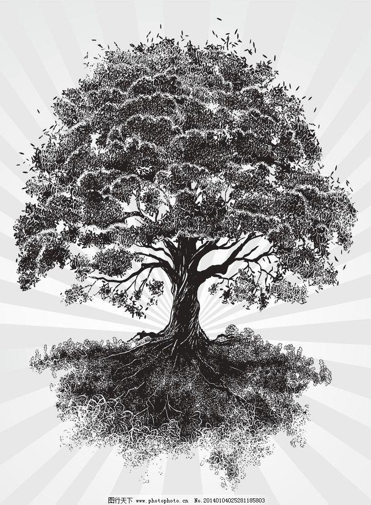 黑白树木图片