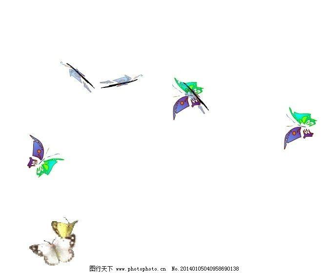 蝴蝶的小鸟简笔画彩色