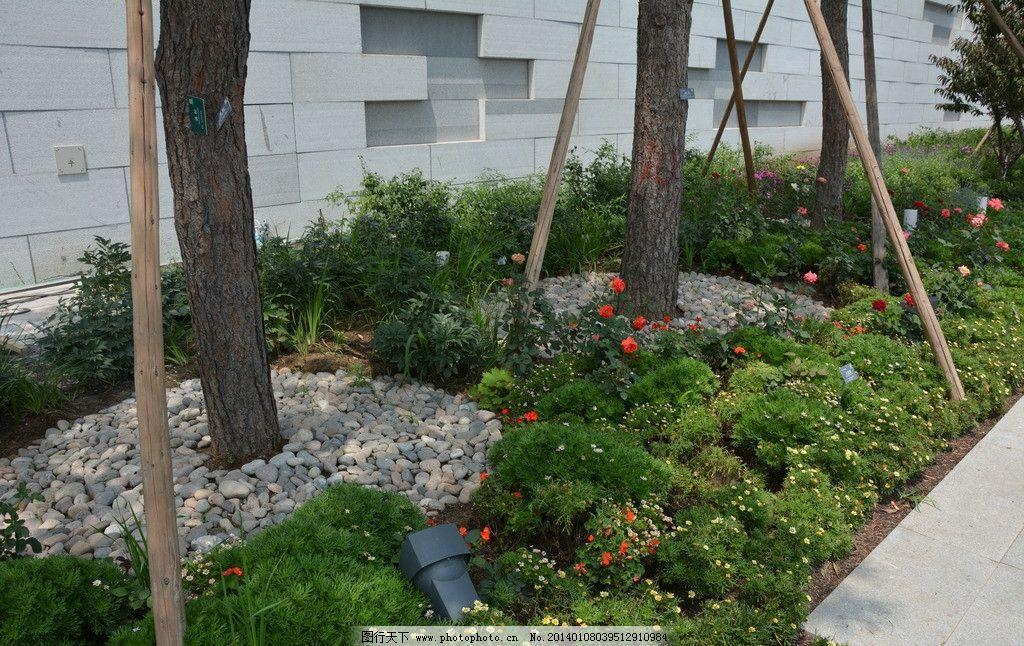 园林景观 摄影 园建园路 铺装 小品 雕塑 乔木 灌木 草坪 草皮