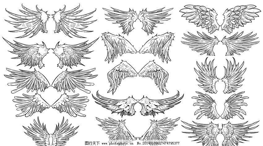 翅膀 羽毛 天使翅膀 翅膀设计 翅膀素材 鸟类翅膀 鸟儿翅膀 纹身图案