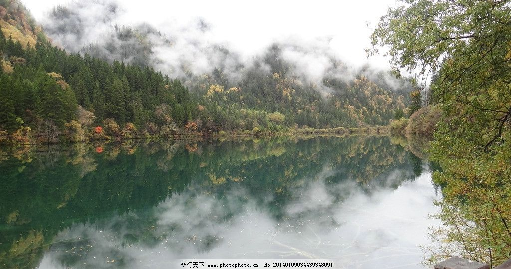 九寨沟风景 树水 高清晰 四川 山 美丽 摄影 天空 旅游 自然风光