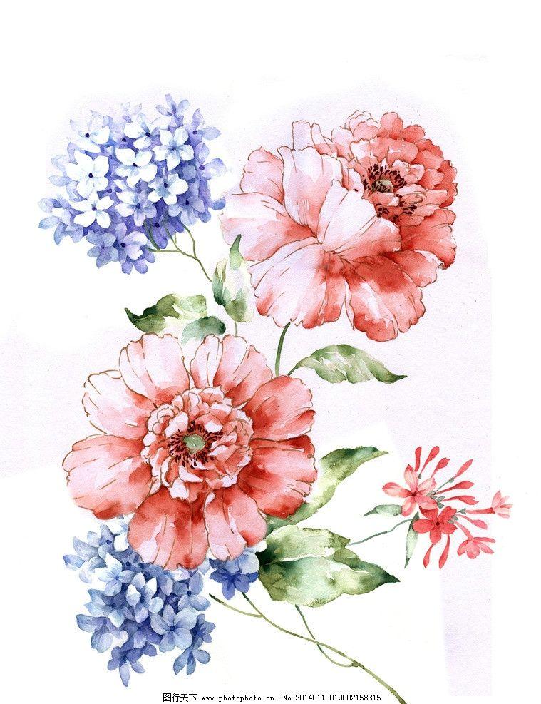 手绘花卉 水彩 花卉 手绘 玫瑰 满天星 绘画书法 文化艺术 设计 300