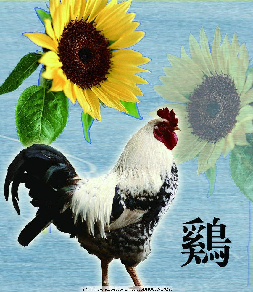 十二生肖 鸡 复古 底纹 古建筑 中西结合 创意 向阳花 装饰画图片