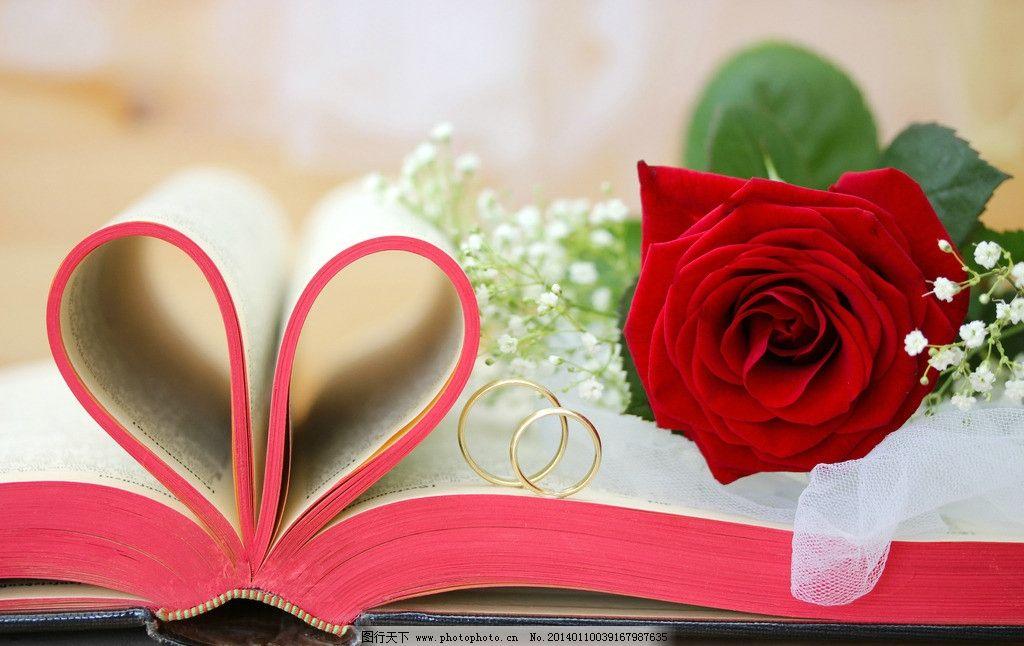 情人节 玫瑰 浪漫 鲜花 戒指 求婚 心 唯美 书 节日素材 摄影图片