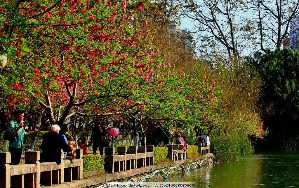 公园春色 公园 春天 湖水 桃花 红花 绿树 护栏 游人 园林建筑 建筑园