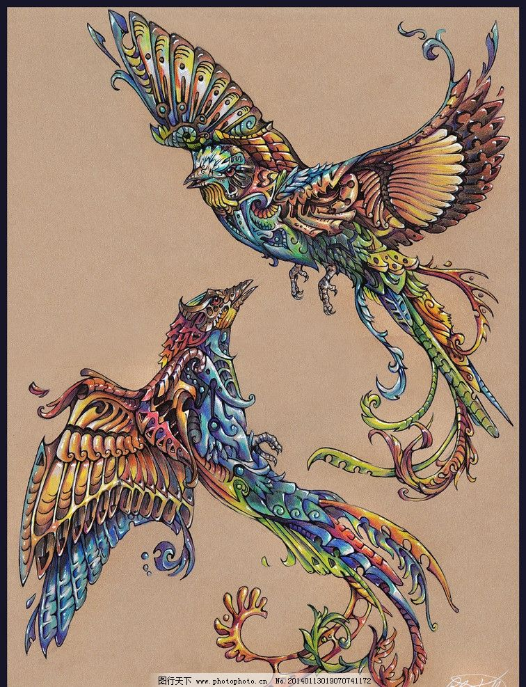 绘画彩色凤凰图片