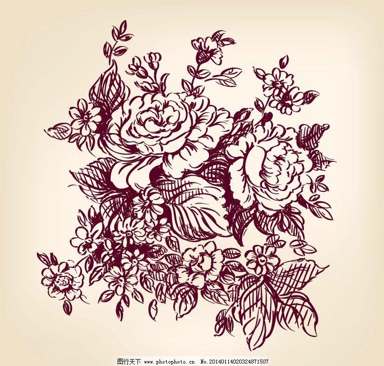牡丹花 牡丹 素描 花纹