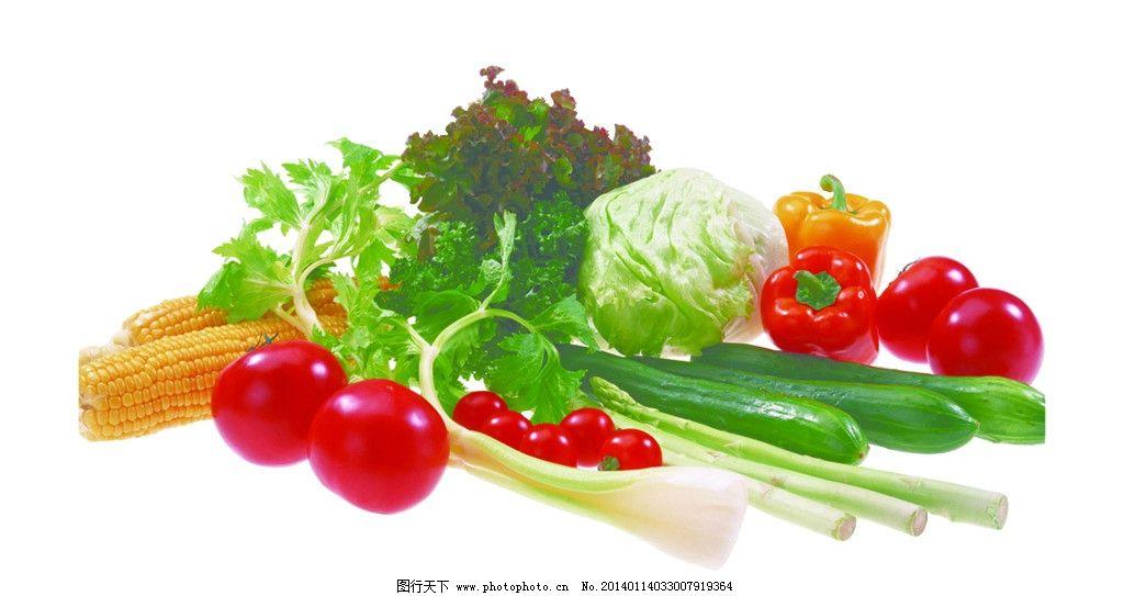 蔬菜变形记手绘小报