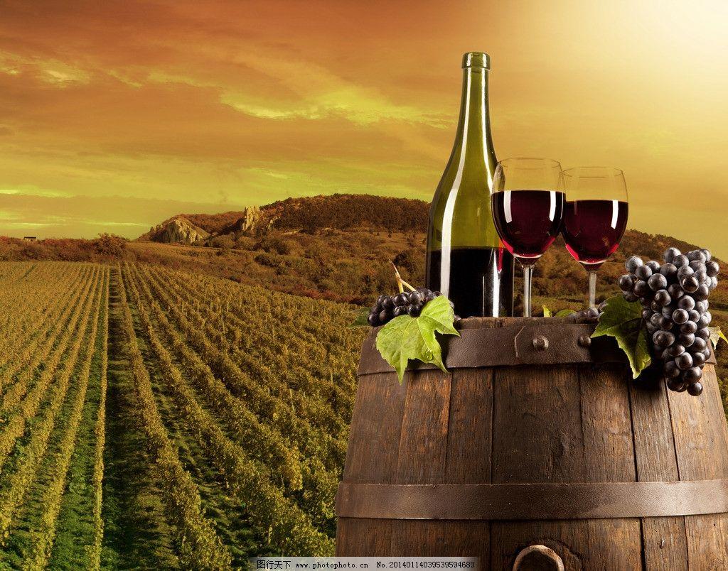 葡萄酒 红酒 葡萄 酒桶 葡萄庄园 天空 云彩 高清 背景 园林建筑 建筑