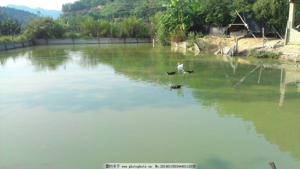鱼塘侗族苗族乡地图