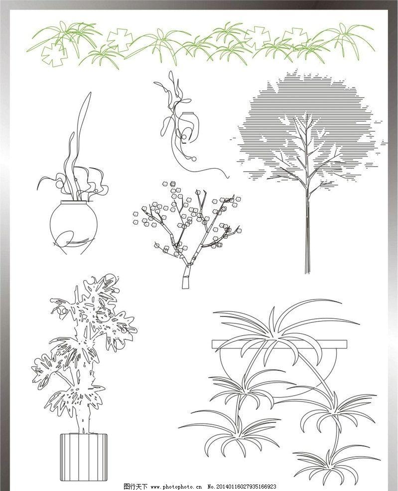 植物立面图图片