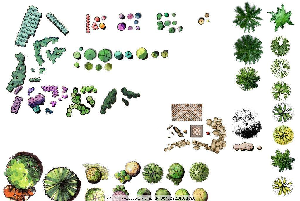 植物手绘彩平素材图片