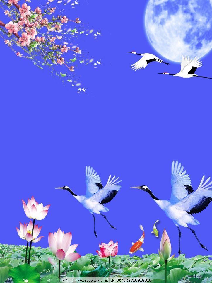 仙鹤 白云 风景 荷花 荷叶 花瓣 蓝天 鲤鱼 仙鹤素材下载 仙鹤模板