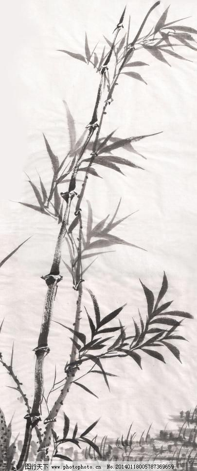 中国画竹 高像素 绘画书法 墨竹 水墨画 文化艺术 竹子 中国画竹设计