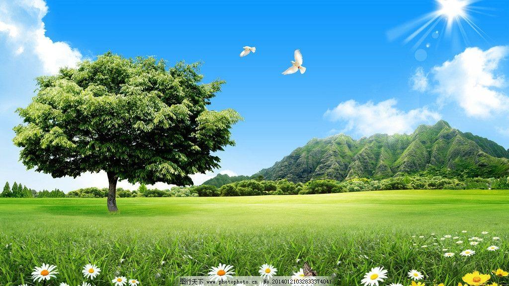 蓝天白云 风景 草地风景 自然 绿色 蓝天 白云 草 草皮 草原 草丛 树