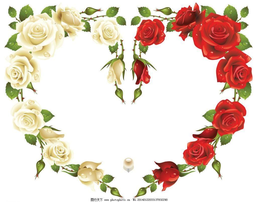 花卉相框 心形相框 白玫瑰 红玫瑰 花纹相框 底纹边框 创意 相框 欧式