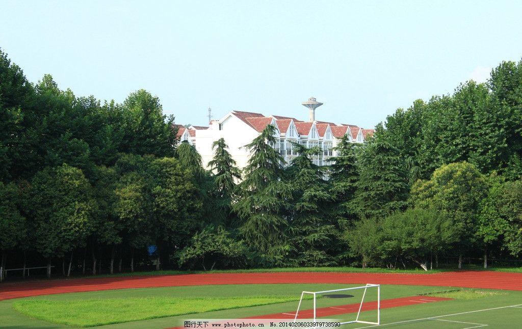 足球场 天空 草地 楼房图片