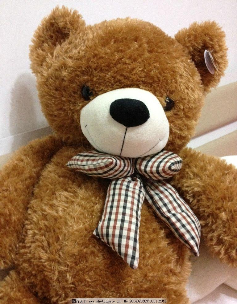 大熊毛娃娃图片