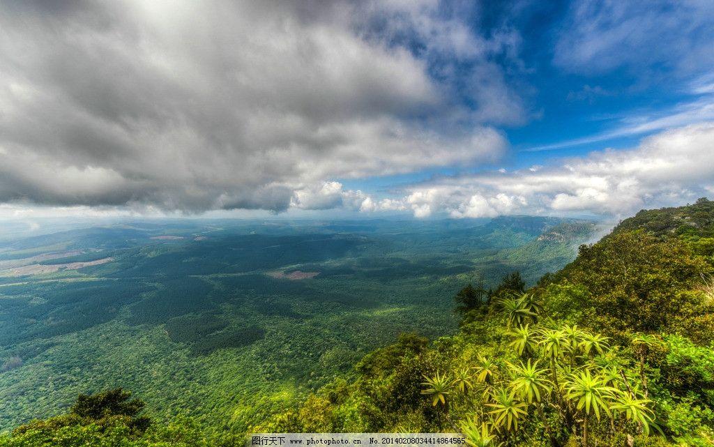 绿色树海 树林 树木 树海 绿色植物 植被 蓝天 白云 云层 郁郁葱葱