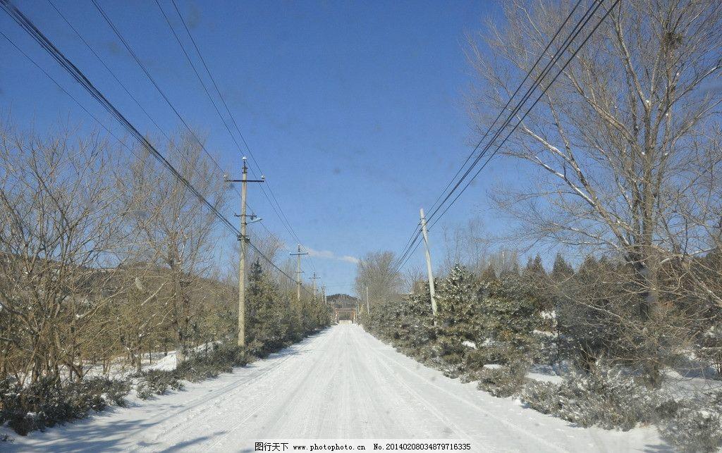北宫森林雪景图片