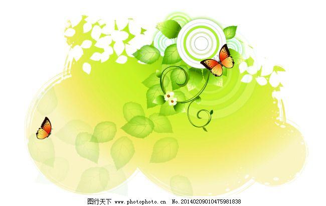白花 白色背景 蝴蝶 花朵 绿叶 梦幻 阳光 叶子 圆圈 y-122 摇曳 蝴蝶