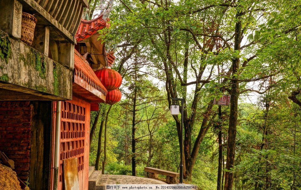 树木公园图片