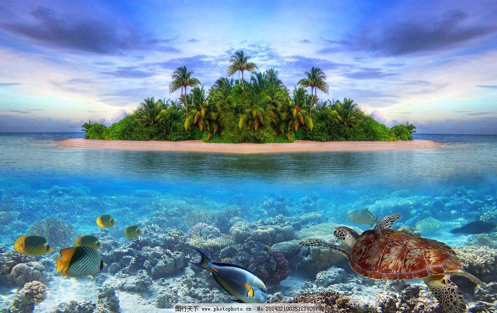 大海 海底 海洋生物 海鱼 海岛 绿色植被 海龟 天空 生物世界 摄影