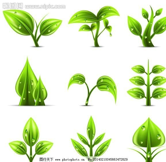 环保 保护环境 环境保护 eco 清洁能源 绿色科技 绿色能源 绿叶 自然