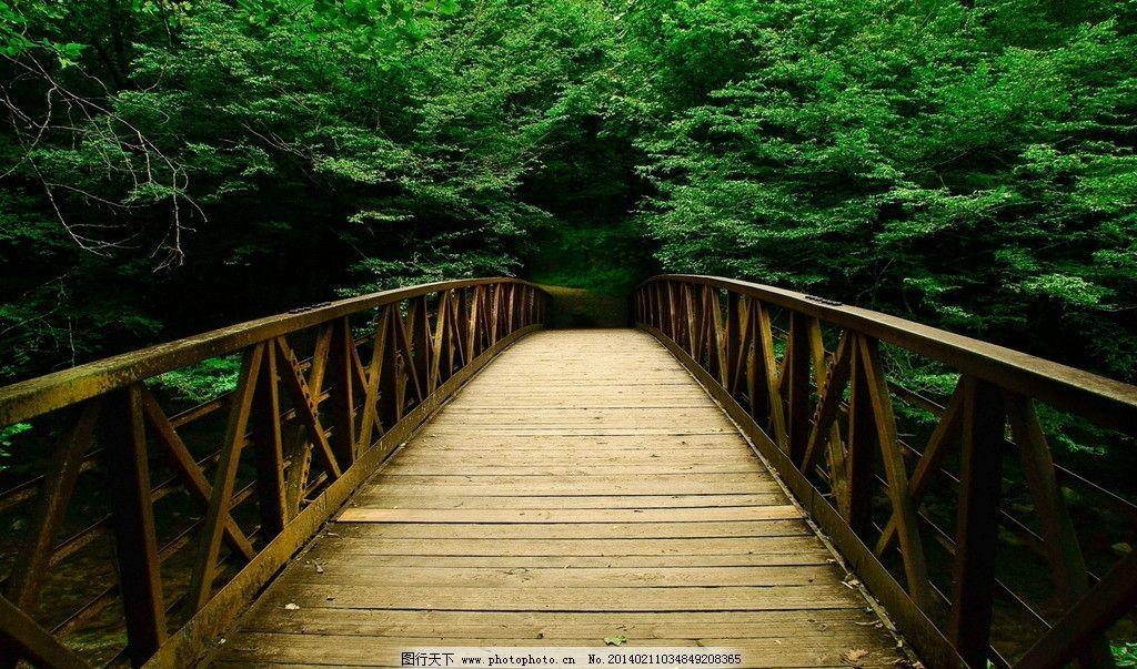 桥风景 壁纸图片