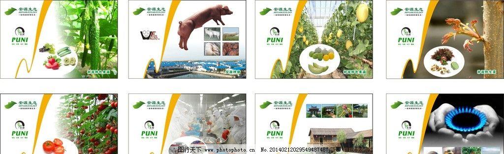 产品宣传 农场 水果 蔬菜 野菜 企业 展板 上墙牌 矢量图片