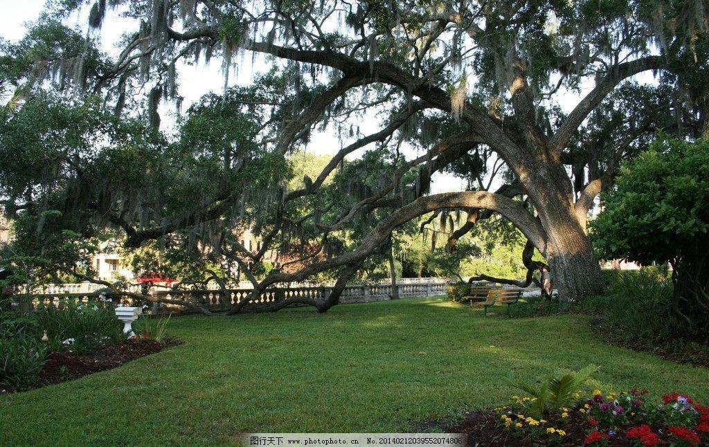 公园 建筑 园林 园艺 树木 建筑园林 园林建筑 摄影 72dpi jpg