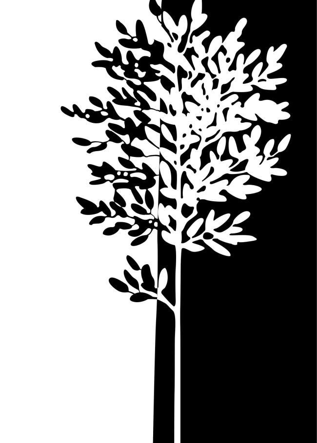 黑白发财树装饰画