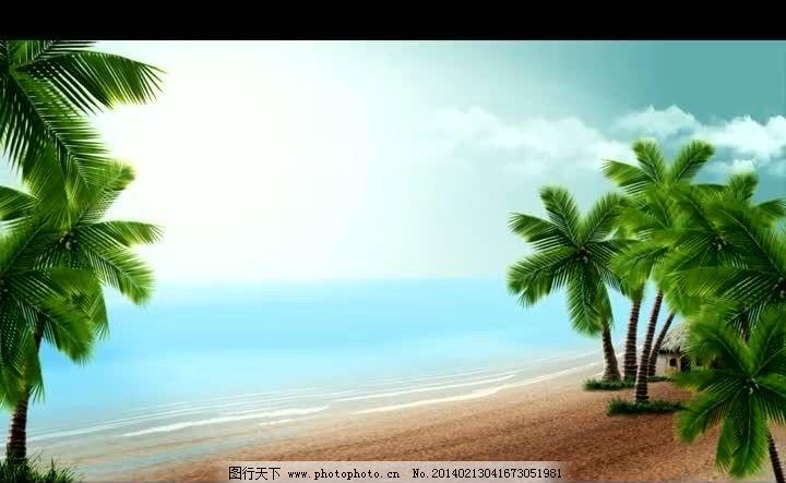 海滩风景背景视频素材 海岸背景视频素材 海滩椰树背景视频 海岸背景