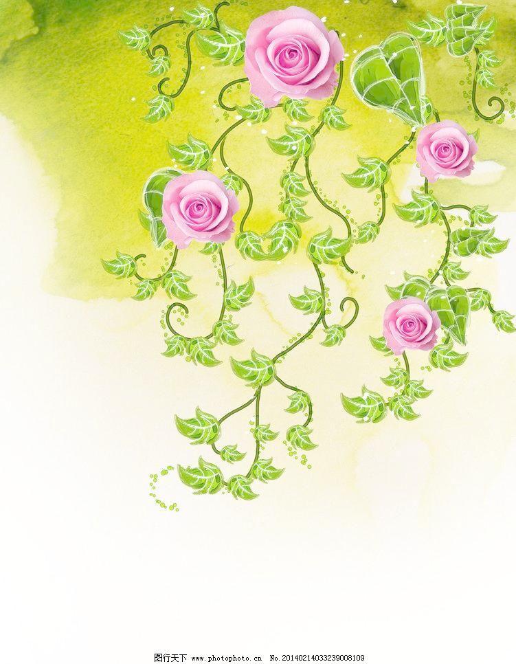 玫瑰花 广告设计模板 花卉 藤蔓 叶子 移门 玫瑰花素材下载 玫瑰花
