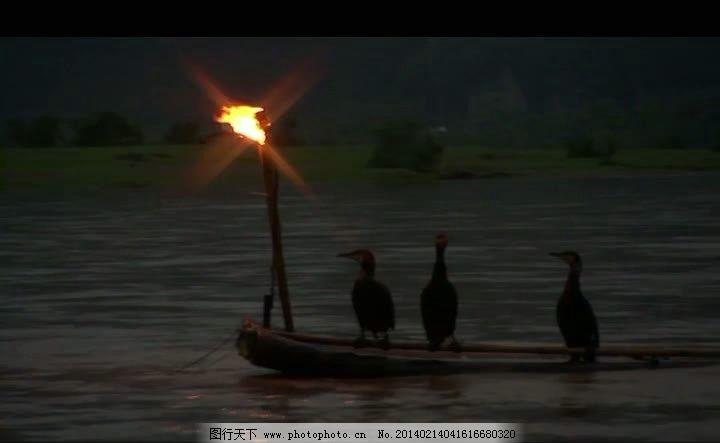 夜晚河中捕鱼视频素材