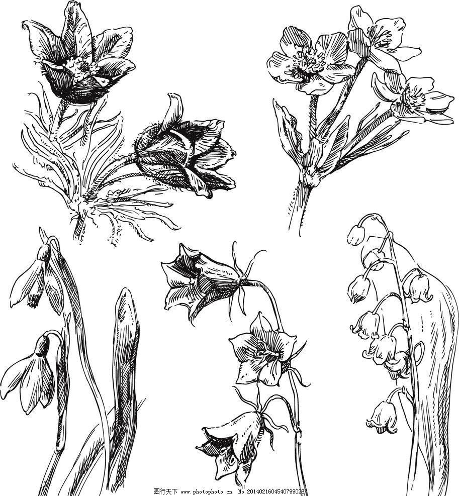 手绘花卉 花纹 花纹花卉 线描 矢量花纹 鲜花 花草背景 花草