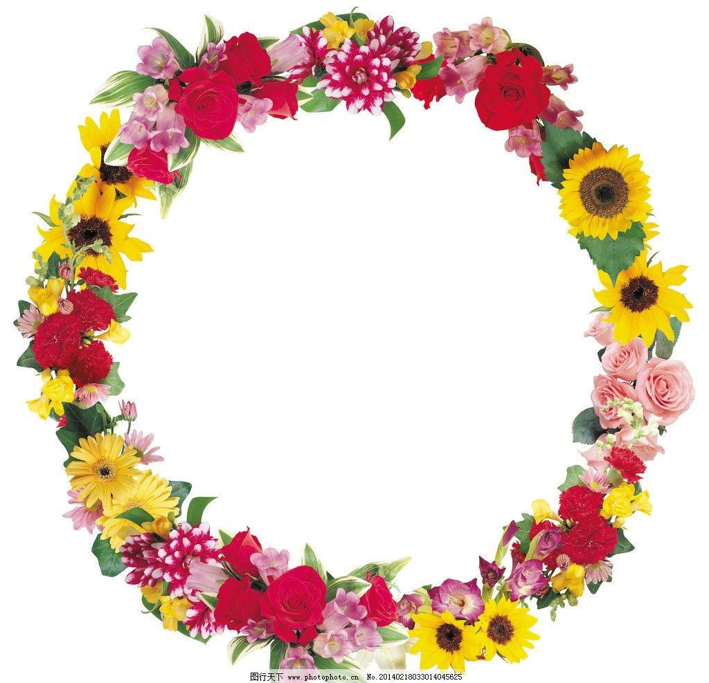 梦幻 红玫瑰 手绘花纹 手绘花朵 移门花纹 欧式复古 花纹 背景 花纹