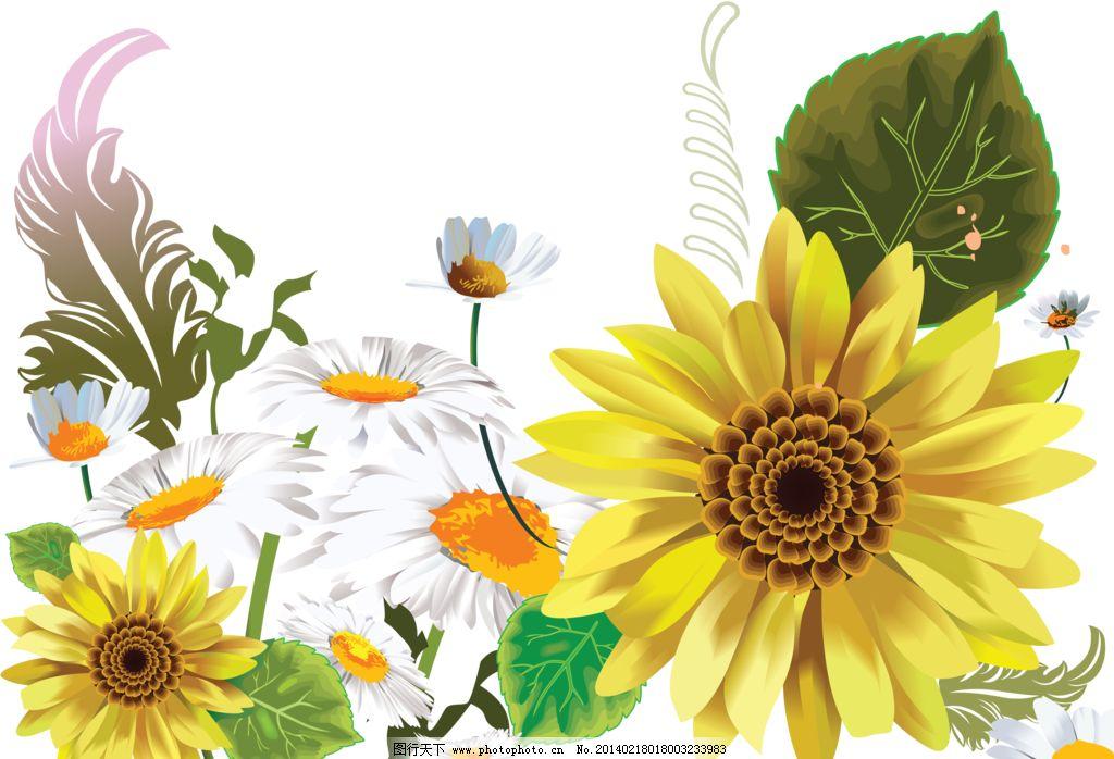 向日葵 向阳花 葵花 菊花 白色菊花 手绘向日葵 向日葵花纹 精美花纹