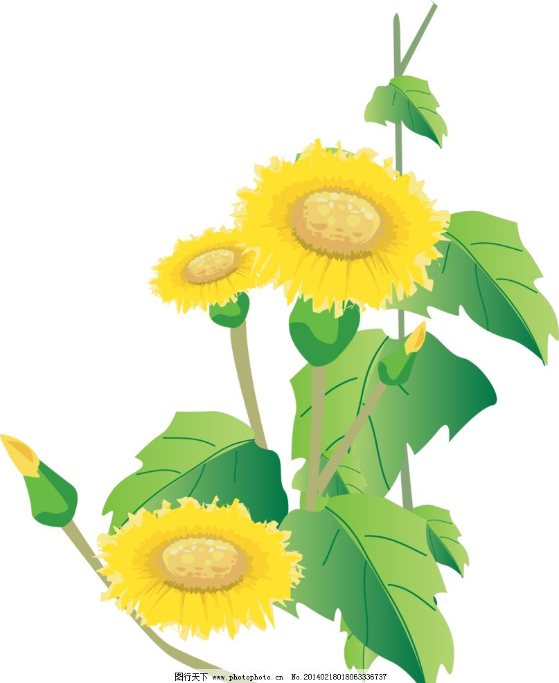 向日葵 向阳花 葵花 手绘向日葵 向日葵花纹 精美花纹 向日葵移门