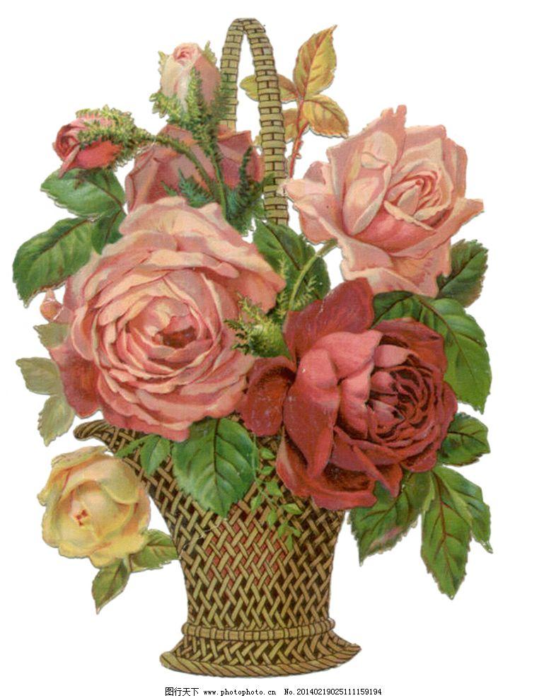 玫瑰花篮图片图片