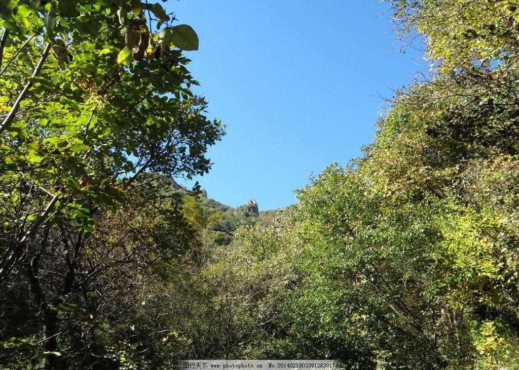 大茂山风景 古北岳 天空 唐县 大树 绿叶 国内旅游 旅游摄影