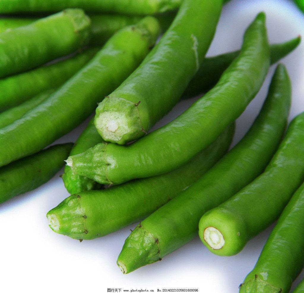 辣椒 很辣的辣椒 尖椒 地产椒 蔬菜 健康蔬菜 美味蔬菜 绿色蔬菜 营养