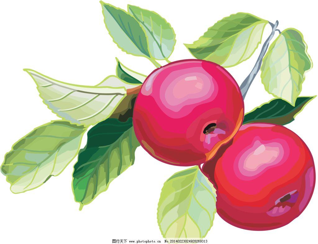 苹果 红苹果 叶子 水晶苹果 创意水果 水果静物 水果 营养 apple 美味