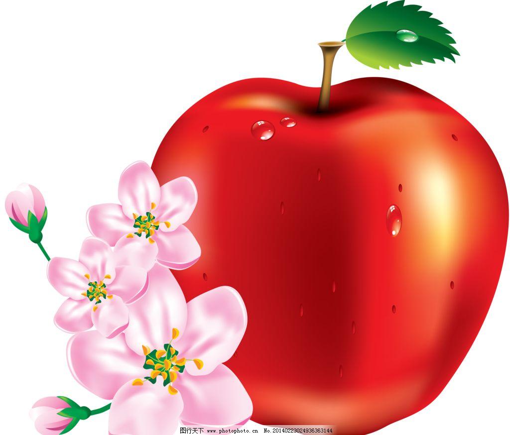 苹果 红苹果 水晶苹果 苹果花 花朵 创意水果 水果静物 水果 营养