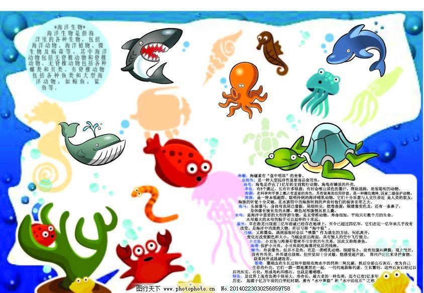 海洋生物小报 手抄报 海洋生物简介 鲨鱼 章鱼 水母 海豚 乌龟