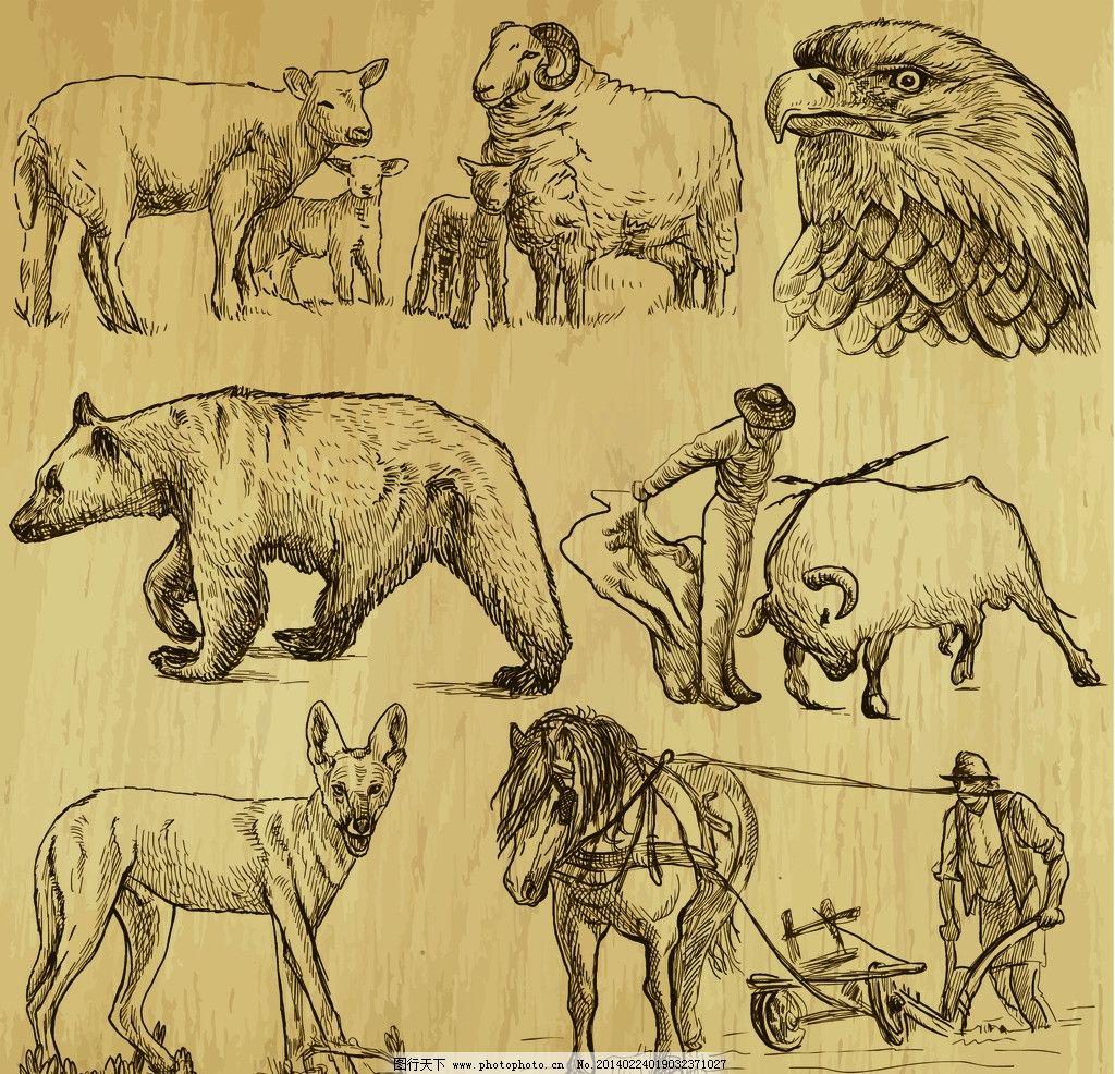 手绘人物 手绘插图 牛仔 斗牛 狼 熊 牛 羊 老鹰 美术绘画 文化艺术