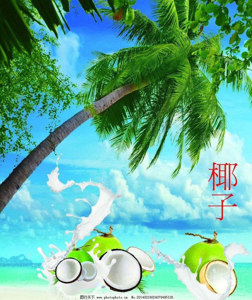 椰子 椰子树 椰浆 阳光沙滩 清新 自然风光 自然景观 设计 72dpi jpg